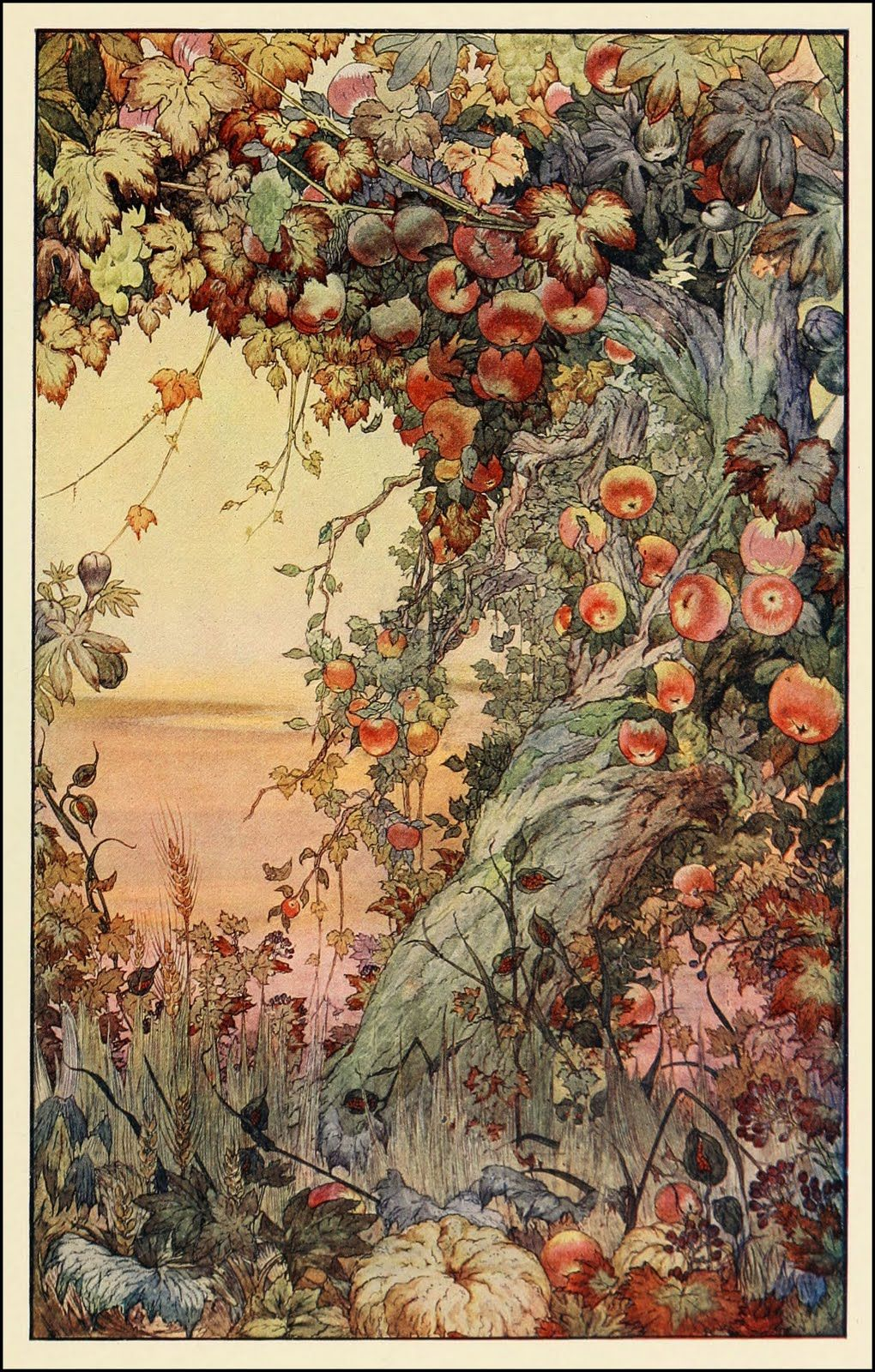 Edward J Detmold, Fruits of the Earth