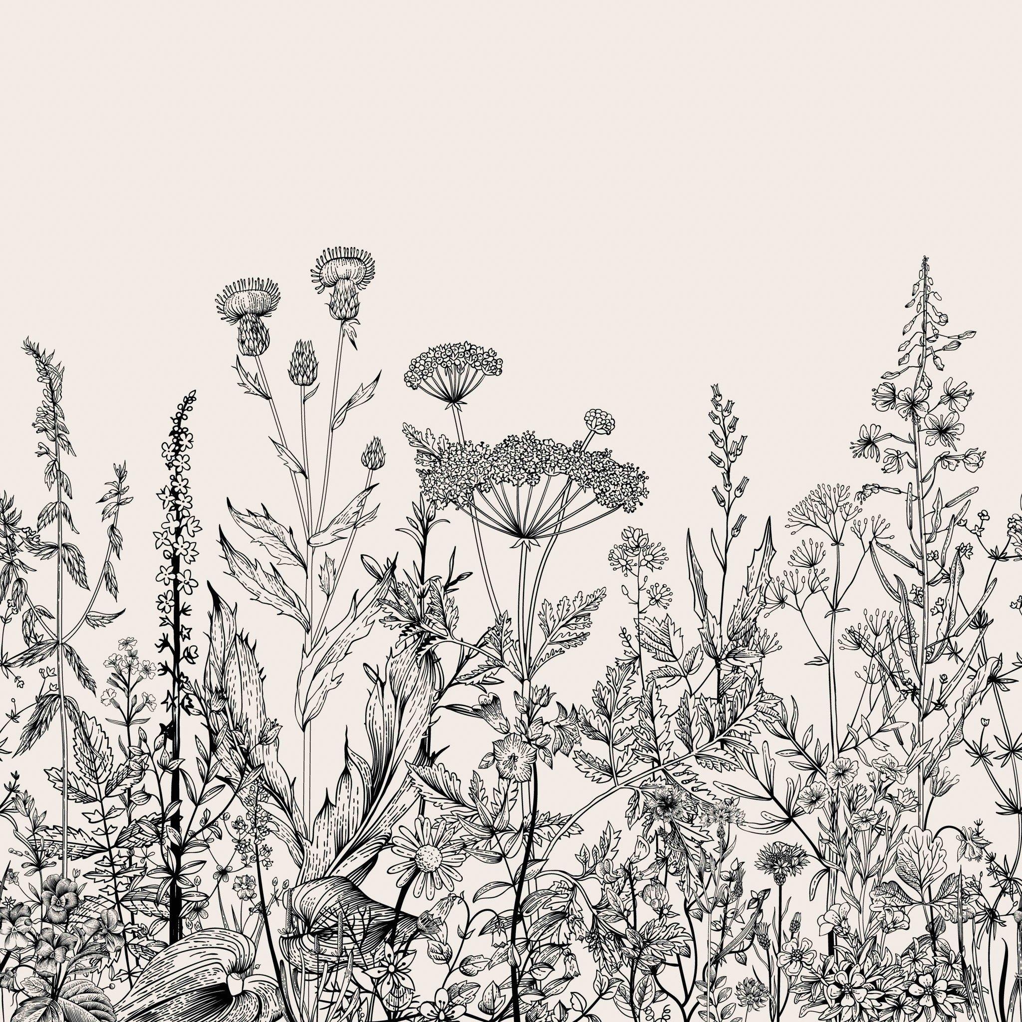 Ophelia Wallpaper Botanical illustration black and white