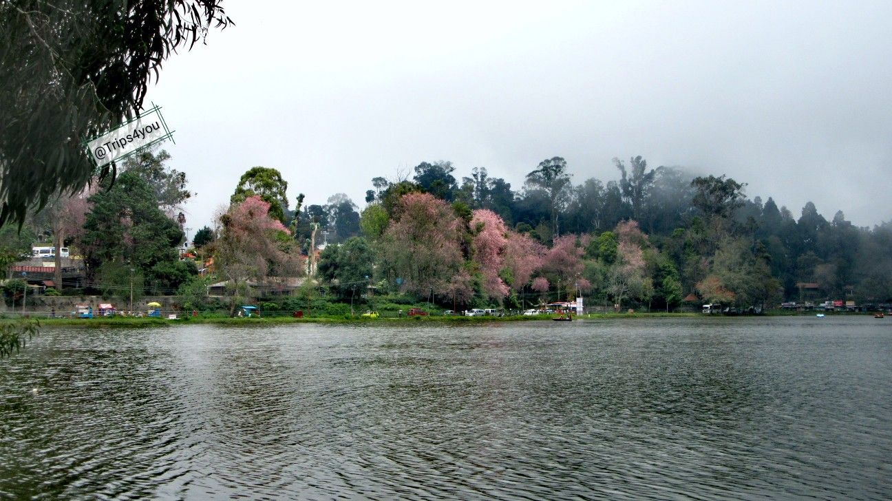 "Kodaikanal is also called the ""Princess of hills"".It is a"