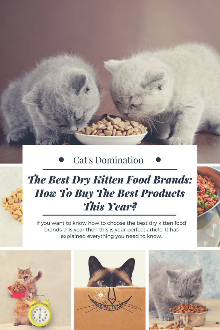 Pin By Tiffany The Cat S Domination On Cat Supplies Cat S Domination Kitten Food Kitten Food Brands Kitten