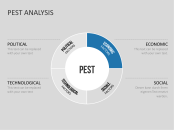 Pest  Pestel  Pestle Analysis  Projects To Try