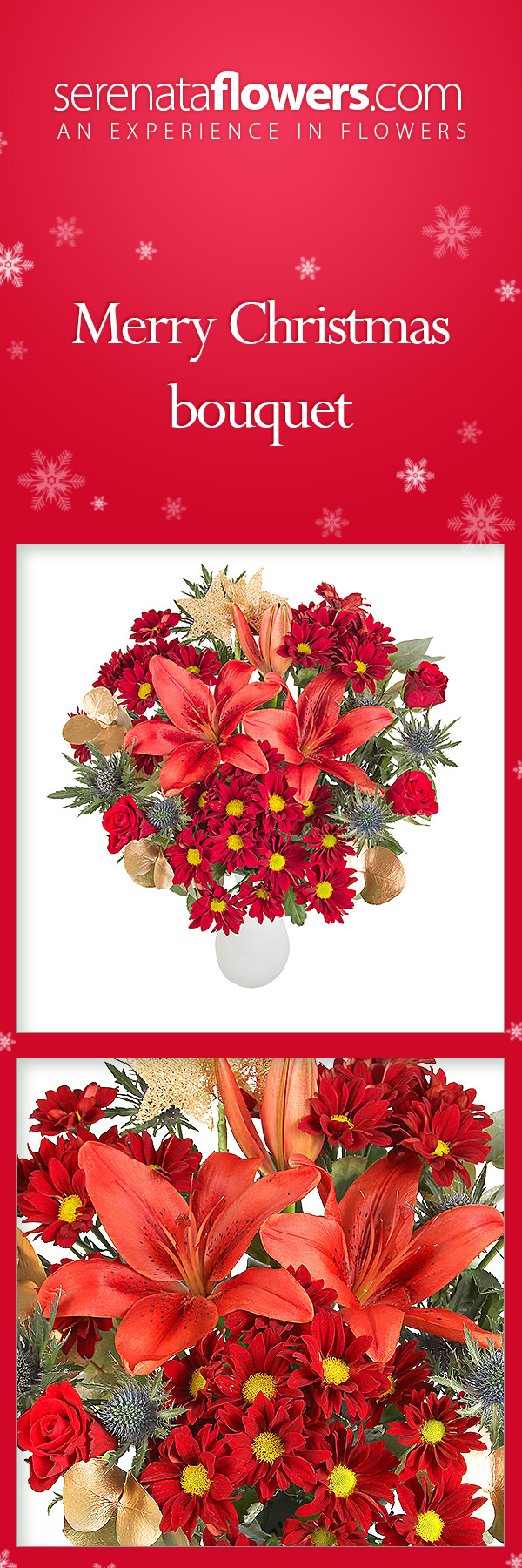 Christmas roses lilies orange red bouquet christmasflowers