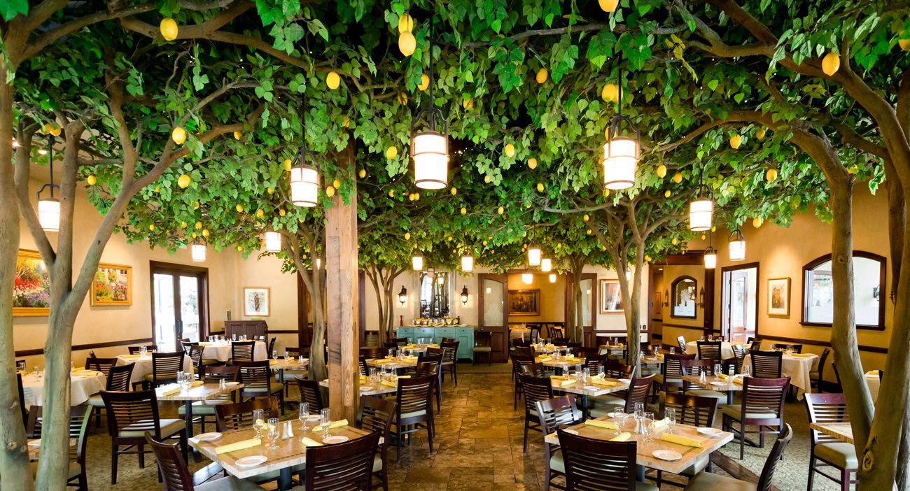 La Jolla Groves, Provo, UT. Two words: Lemon Cake. | Happily Ever ...