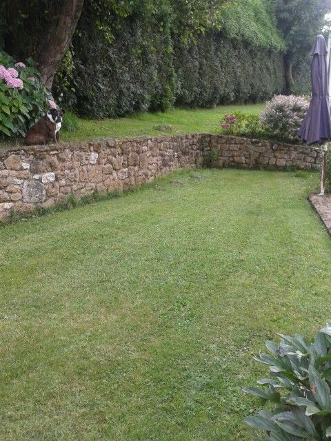 Desnivel con muro de piedra ale pinterest muro de for Jardines en desnivel