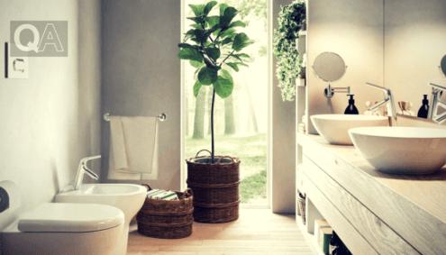 Le migliori piante per arredare bagno e cucina.   Ricamo ...