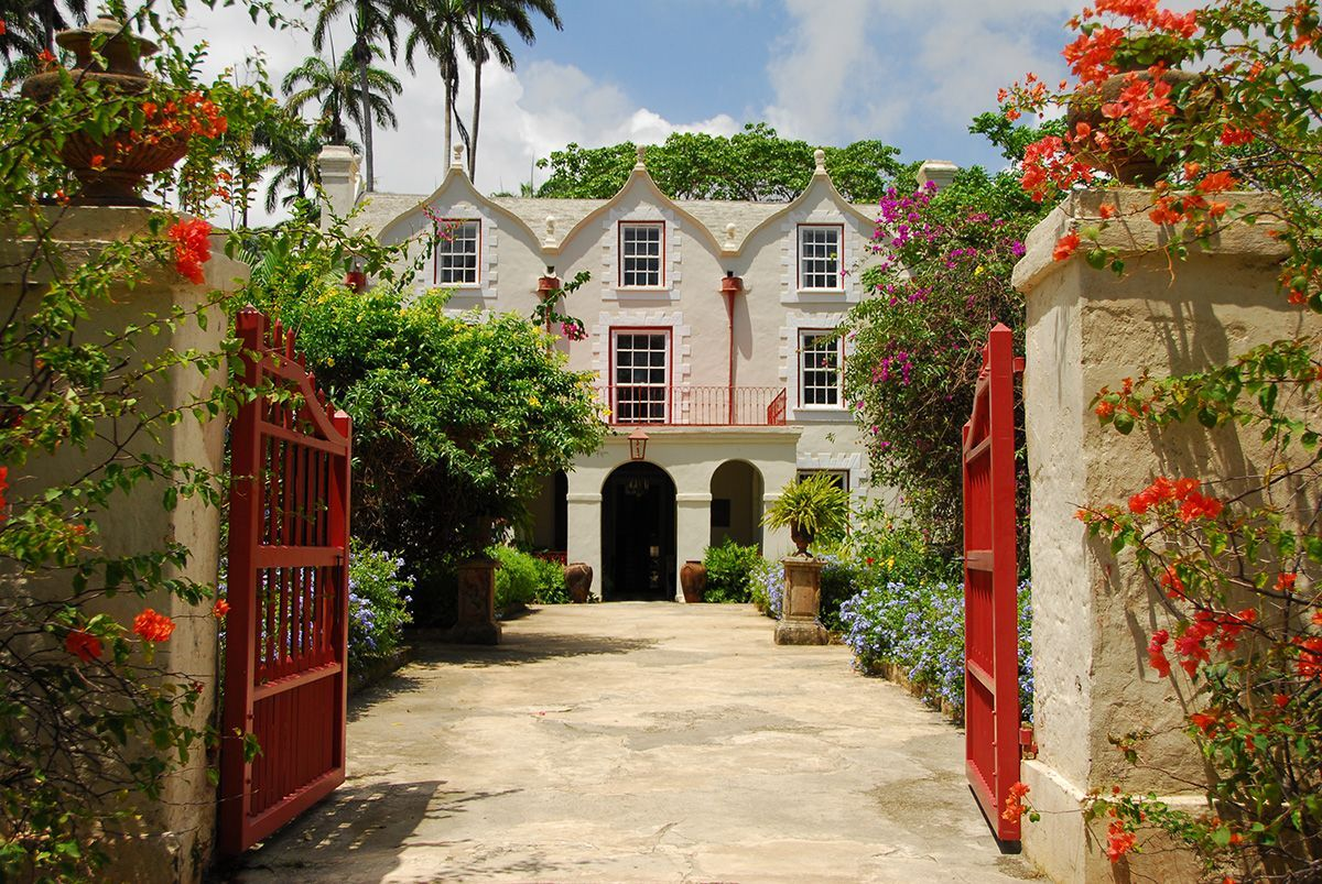 plantation barbados rum tesco