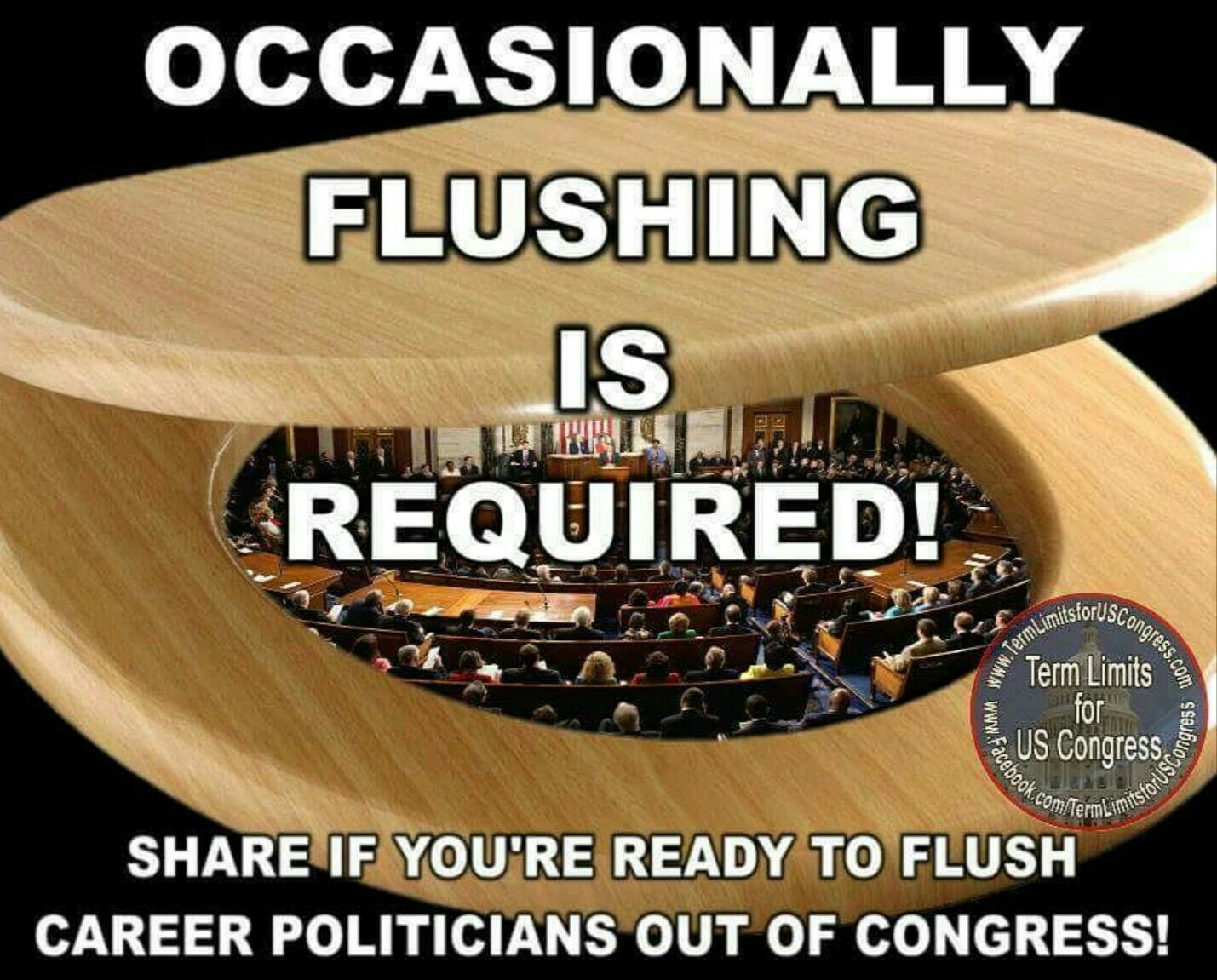 Set term limits  Flush the turds  | stuff to read | One