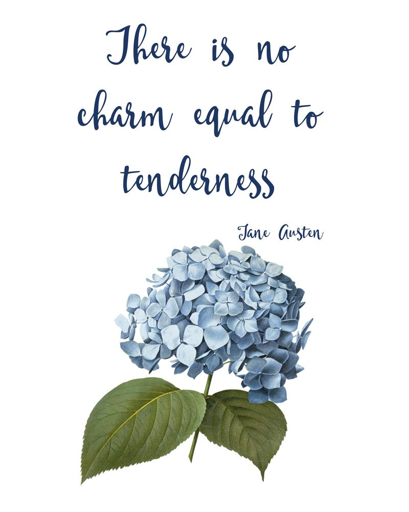 There Is No Charm Equal To Tenderness Jane Austen Quotes Pdf