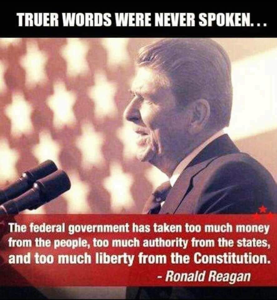 Pin By Christal Hood On Patriotism Political Quotes Ronald Reagan Quotes Words