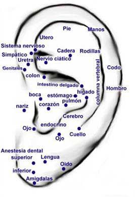 acupuntura para ansiedad y adelgazar in english
