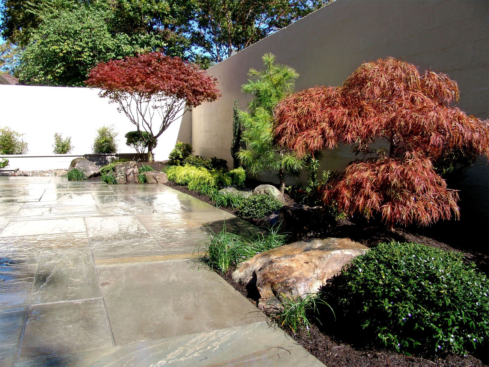 Japanese Garden. Backyard landscape design and hardscape