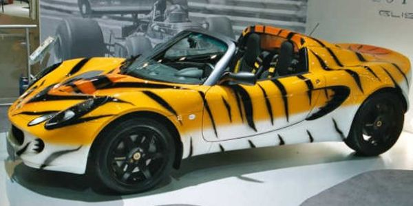 Lotus Elise Tiger Top10 Vehicle Wraps Lots Of Curves And