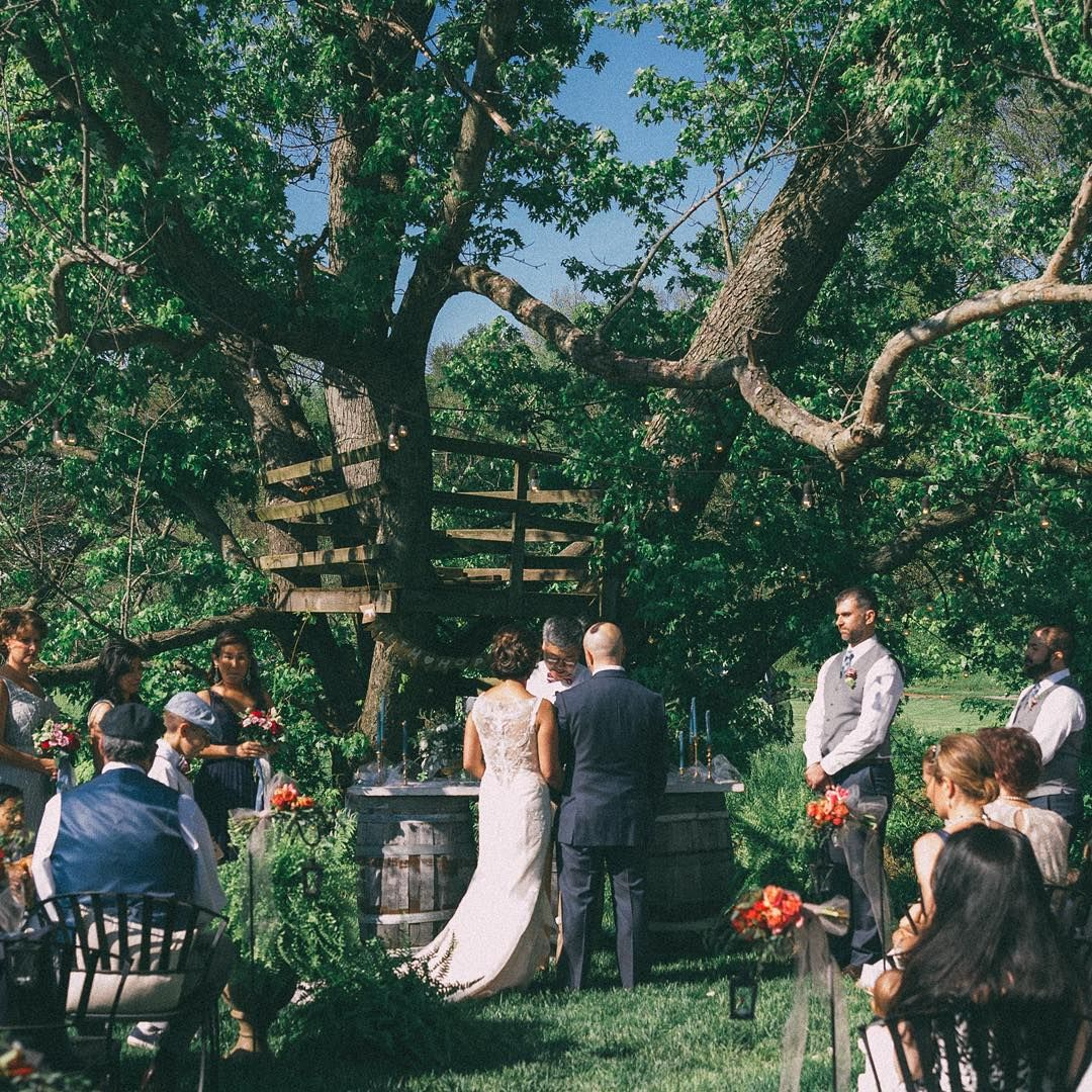 Wedding ceremony at ZionSprings Wedding ceremony