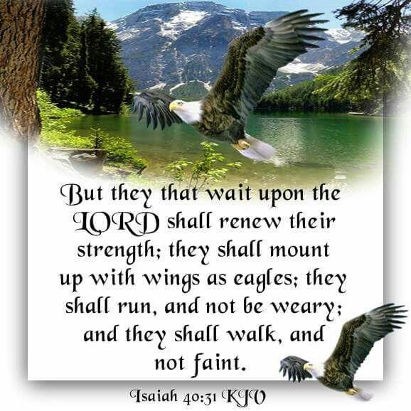 Image result for Isaiah 40:31 kjv
