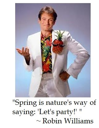 Pin By Wendy Dennis On Quotes Robin Williams Robin Actors