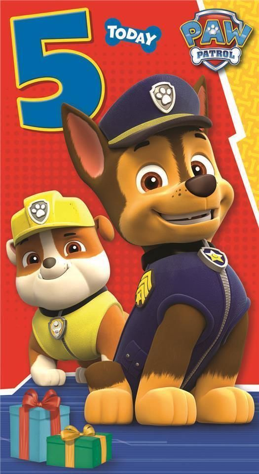 Find Many Great New Used Options And Get The Best Deals For Paw Patrol Happy Birthday Age 5 5th Card At Online Prices EBay