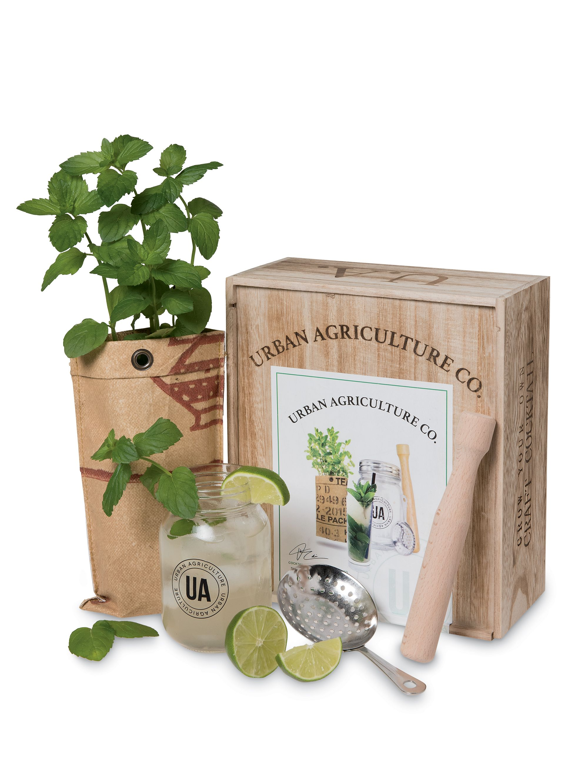 Grow Your Own Cocktail Kit Mint Mojito Gardener S Supply Cocktail Kits Mint Mojito Mojito