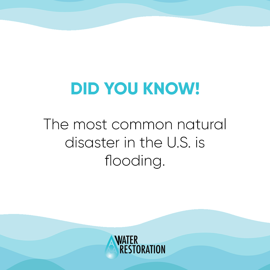 Facts About Floods Contact Us Anytime At 1 833 420 7378 To Restore Your Home Or Business Facts About Floods Natural Disasters Flood