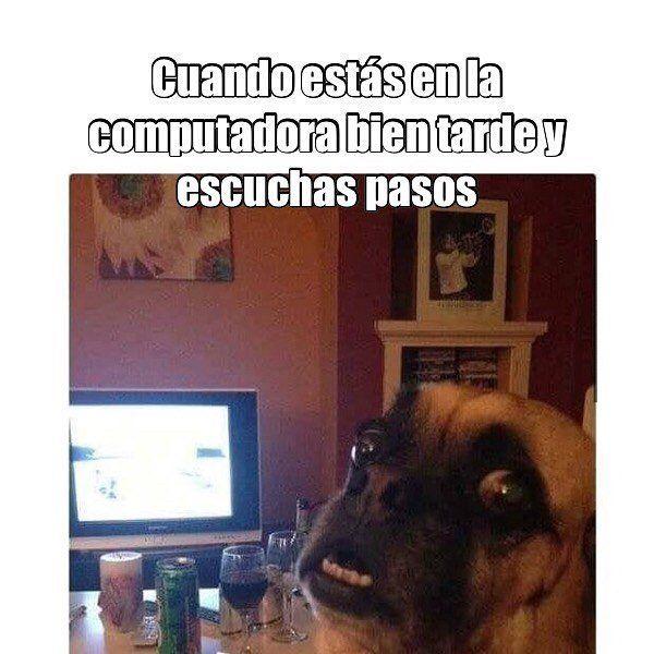 Memes En Espanol Memes 230902 New Memes Memes En Espanol Memes