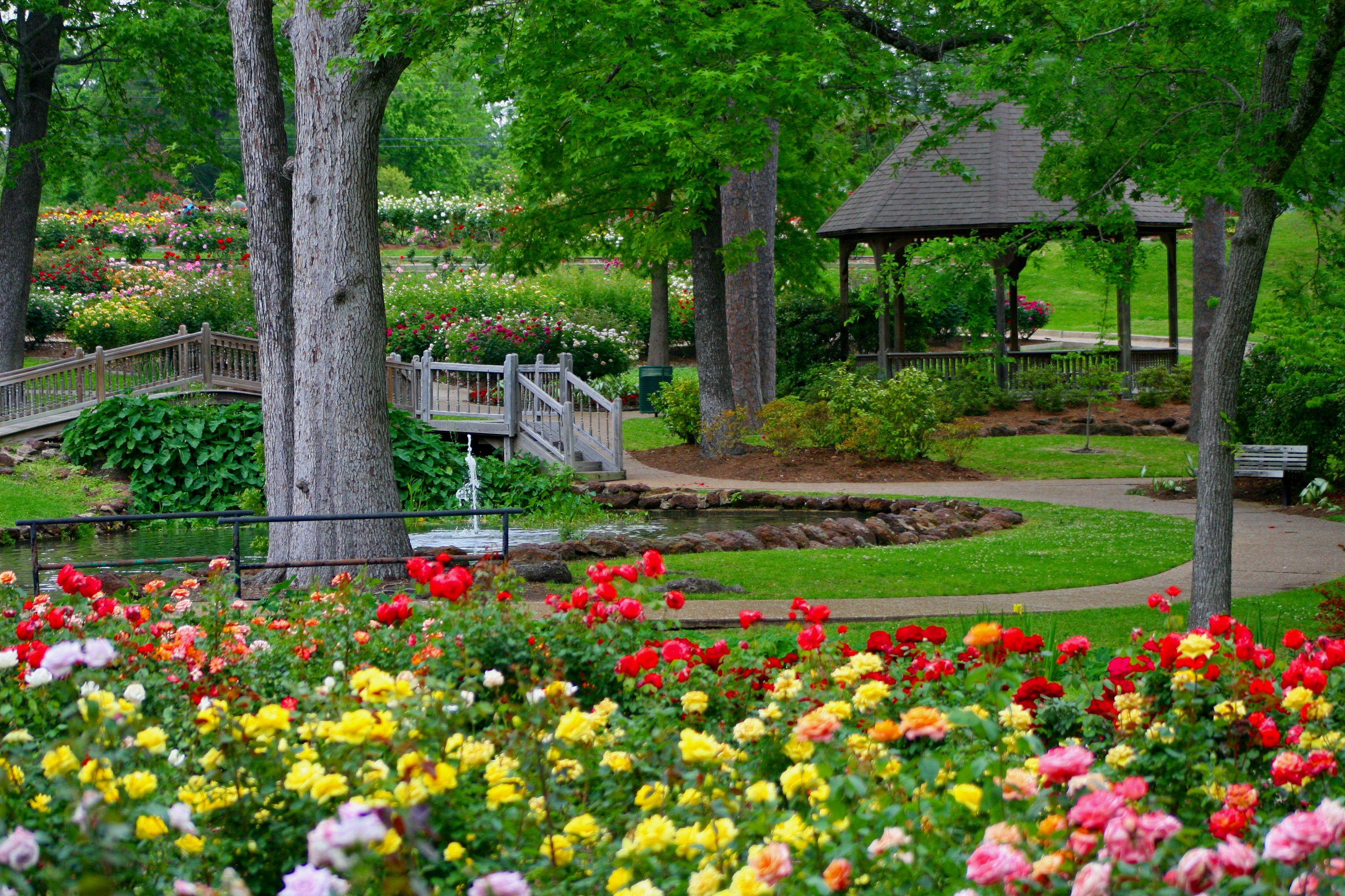 Great Place To Have A Picnic The Tyler Rose Garden Rose Garden Landscape Classic Garden Hillside Garden