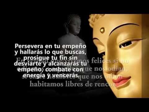 Las 100 Mejores Frases De Buda Sobre El Amor Y Felicidad Frases