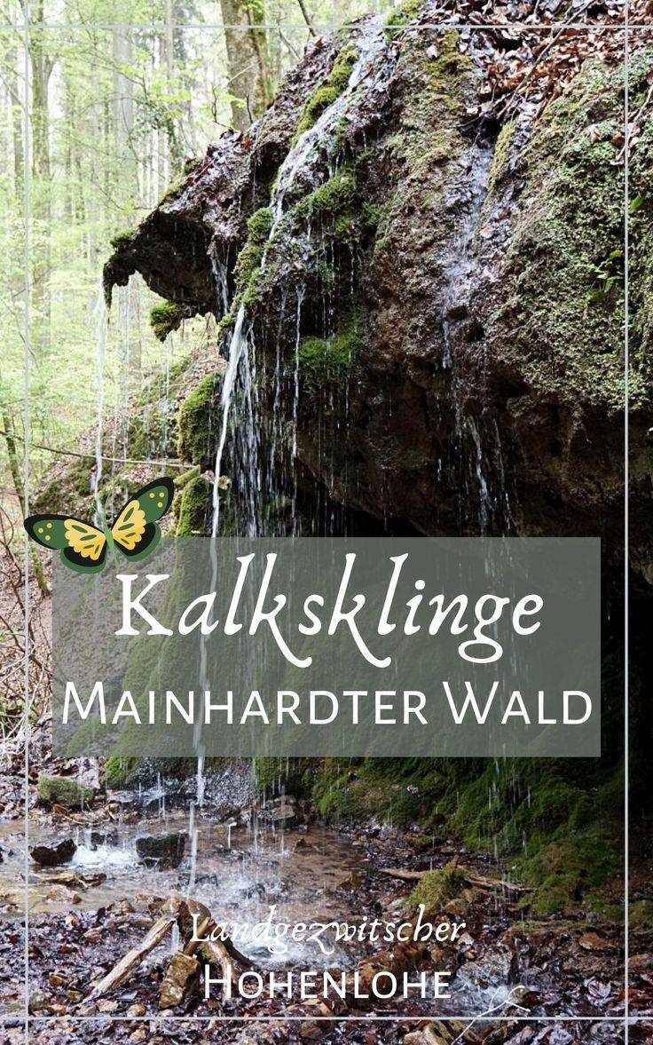 Die Kalksklinge und ihr Kalksbrunnen sind ein kleines Naturjuwel zwischen Untersteinbach und Mainhardt in Hohenlohe. Ein kleiner Wasserfall, ungewöhnliche Kalktuffelsen und seltene Farne machen die Kalksklinge zu einem spannenden und lohnenswerten Ausflugsziel. #Hohenlohe