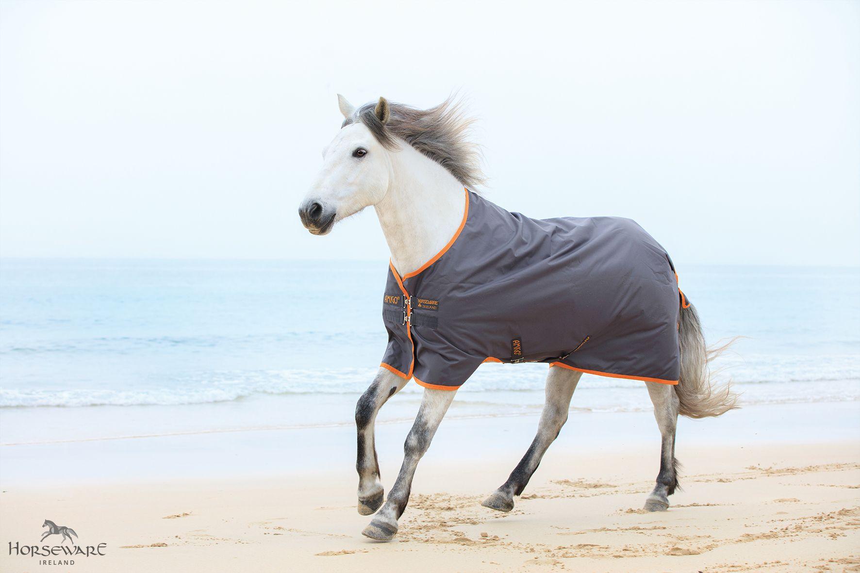Amigo Hero 6 Turnout Visit Www Horseware Com To Find Your Nearest Stockist Grey Horse Horses Horse Rider