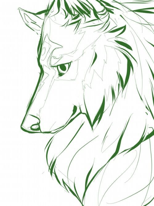 Wolf link tumblr sketches pinterest wolf drawings and drawing ideas