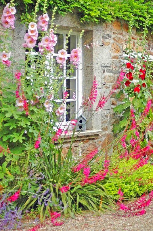 Florida ventanas lindas exoticas for Decorazioni giardino aiuole