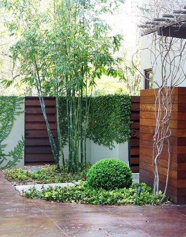 modernize garden with bamboo