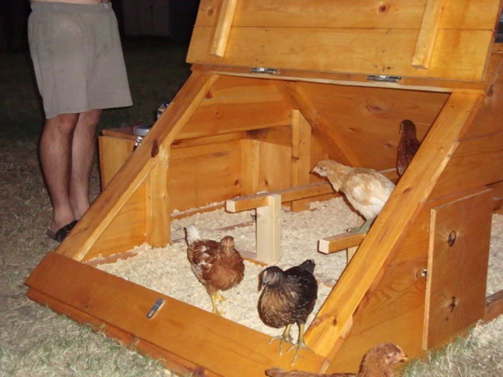 Here's the inside of a small triangular chicken coop ...