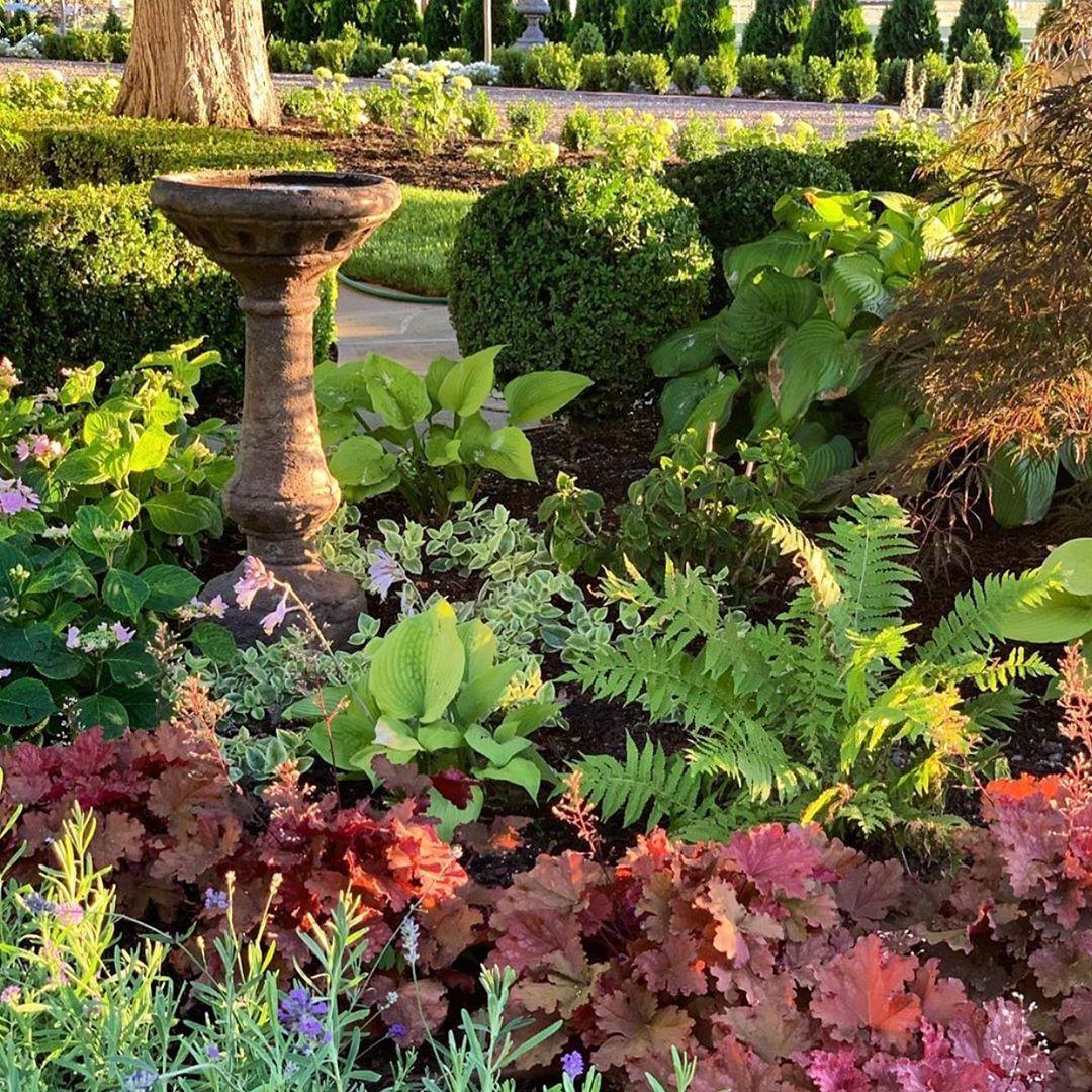 Ootd Girls Home Beautyaddict Trip Likeforlike Instalike Fundraising Photo Beautiful In 2020 Front Garden Landscape Small Backyard Landscaping Garden Design