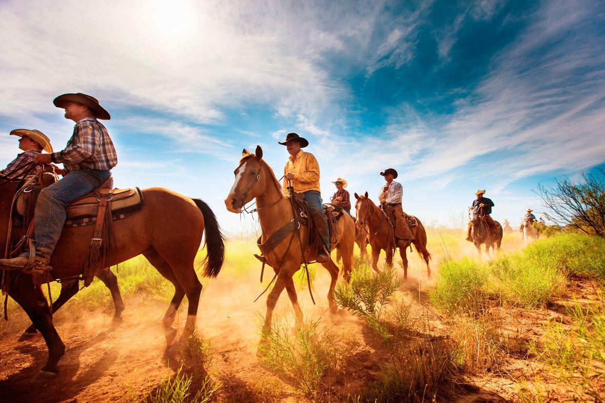 картинки дикого запада диких лошадей вечно