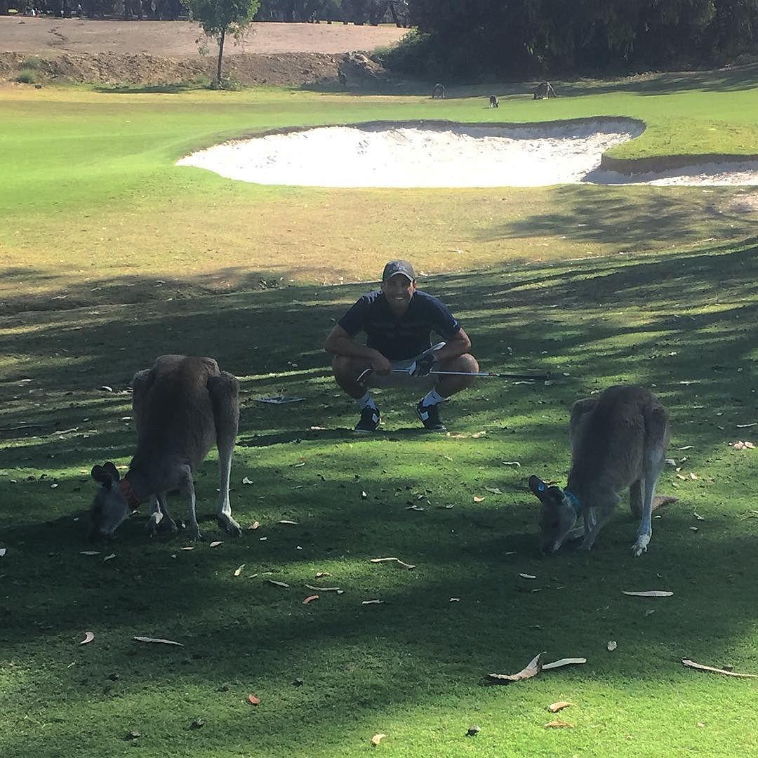 In between 2 of my biggest fans!  #golf #kangaroos #Anglesea by eddygranter http://ift.tt/1KosRIg