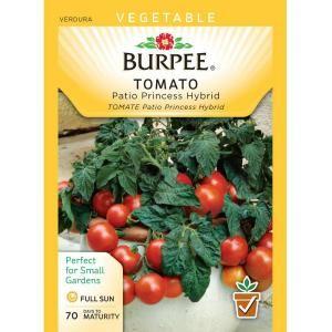 burpee tomato patio princess hybrid