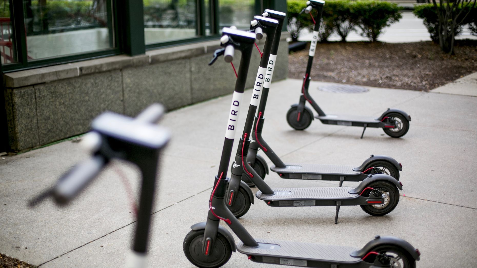 Inside Bird's Scooter Economics — The Information | Startup news and