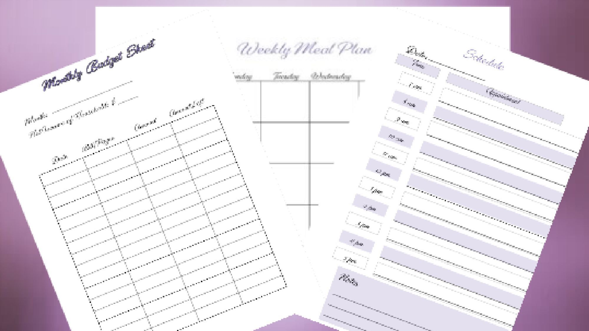 Monthly Budget Daily Schedule And Weekly Meal Planner