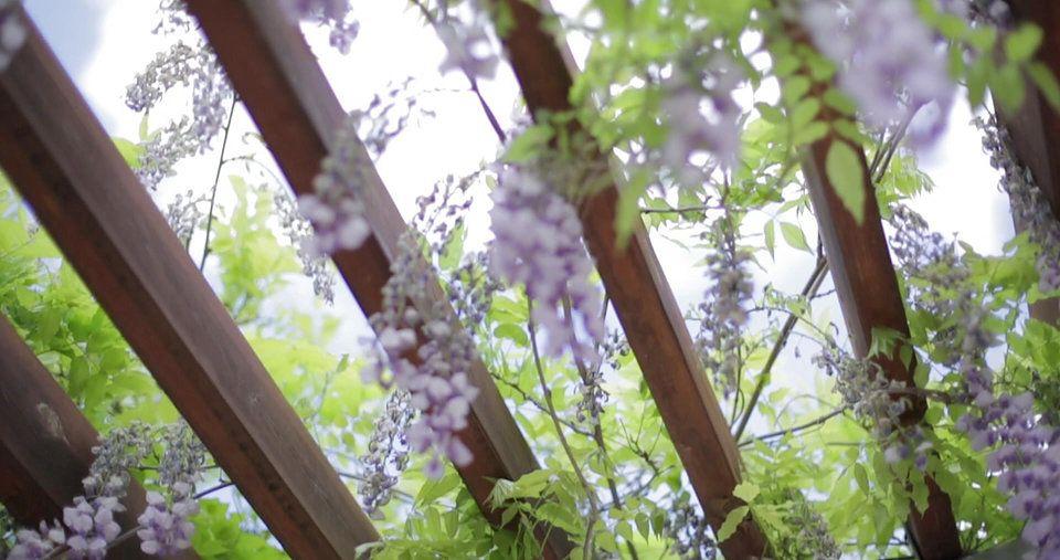 Allisonville Nursery Garden & Home Is A Garden Center And