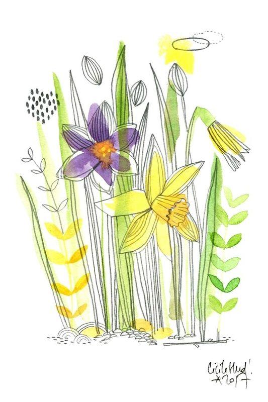 Crocus Jonquilles Cecile Hudrisier Comment Dessiner Une Fleur