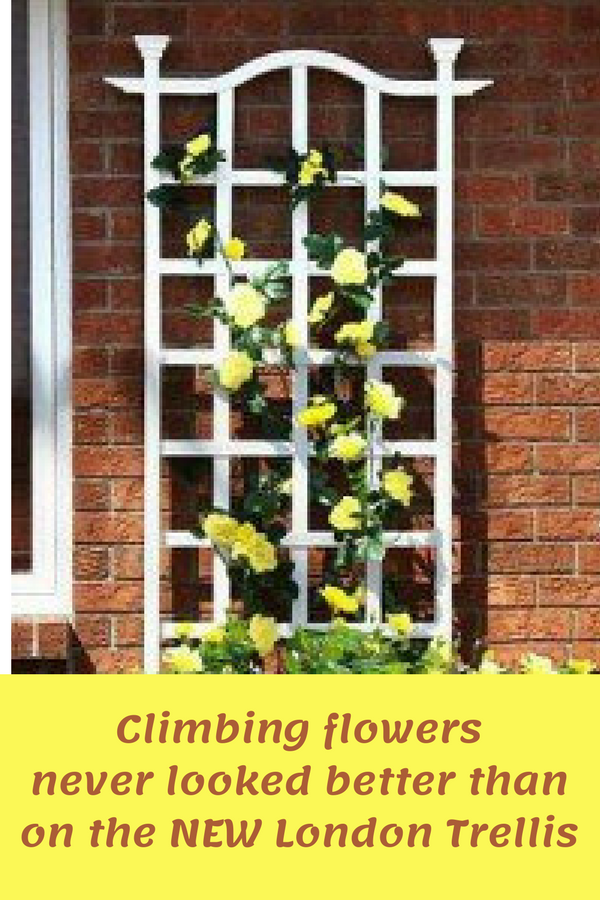 I Can Easily Use Any Vertical Space I Have For Growing Beautiful Flowers With This Virtually Maintenance Free London Trelli Garden Trellis Arch Trellis Trellis