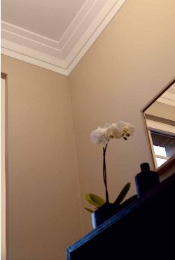 Art Deco Crown Molding Crown Molding Crown Molding Modern Home Renovation