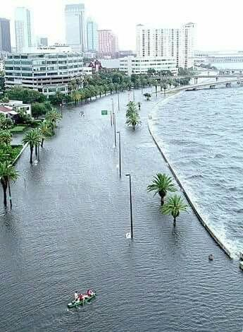 Flooding in Tampa, FL ~~August 1st and 2nd 2015.  Bayshore Drive