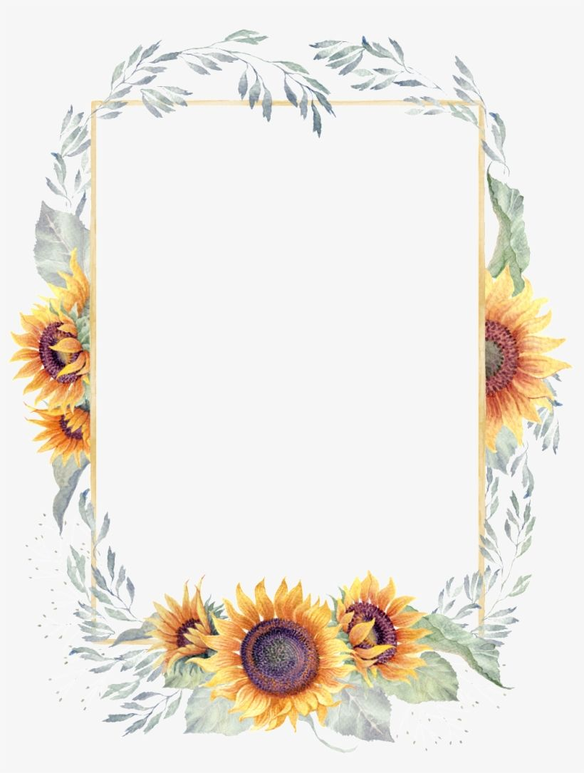 Download Green Watercolor Hand Painted Sunflower Border Transparent Transparent Sun Flower Bord Flower Background Wallpaper Sunflower Wallpaper Flower Border