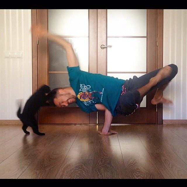 The Best Yoga Trend Involves Adorable Pets #refinery29  http://www.refinery29.com/pets-yoga-instagram#slide8