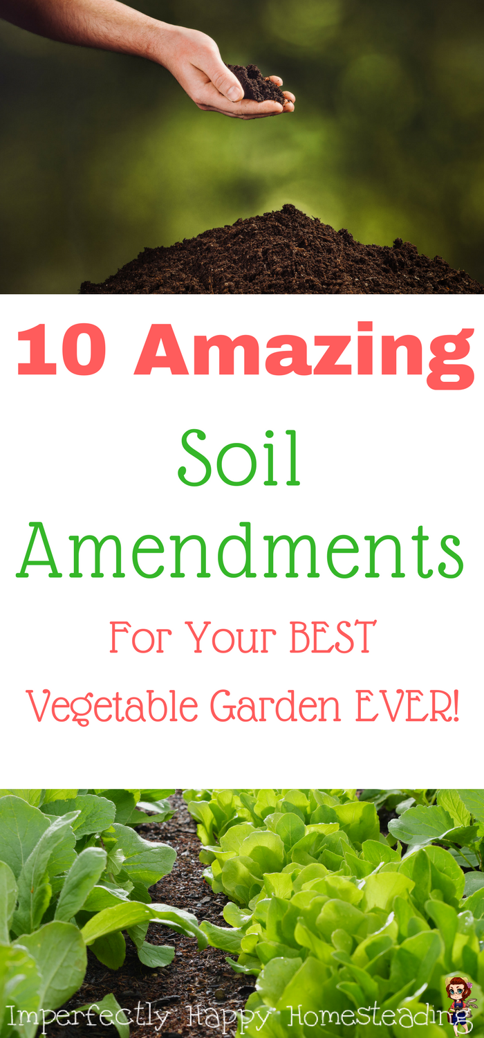 Organic Vegetable Garden Soil Amendments
