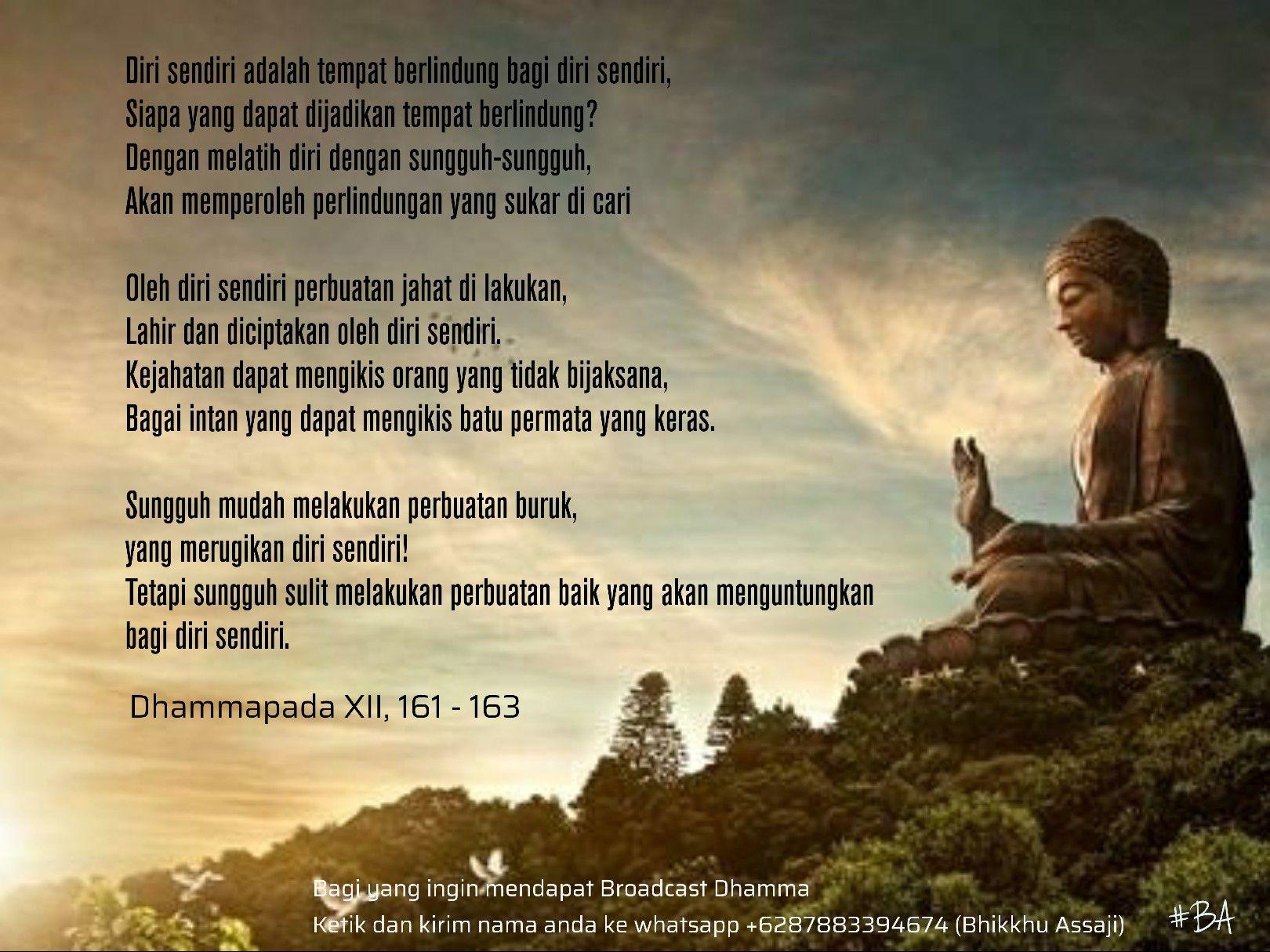 Kata Bijak Buddha Tentang Sabar Cikimm Com