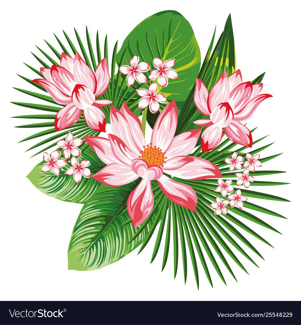 Floral composition pink lotus green leaves vector image on