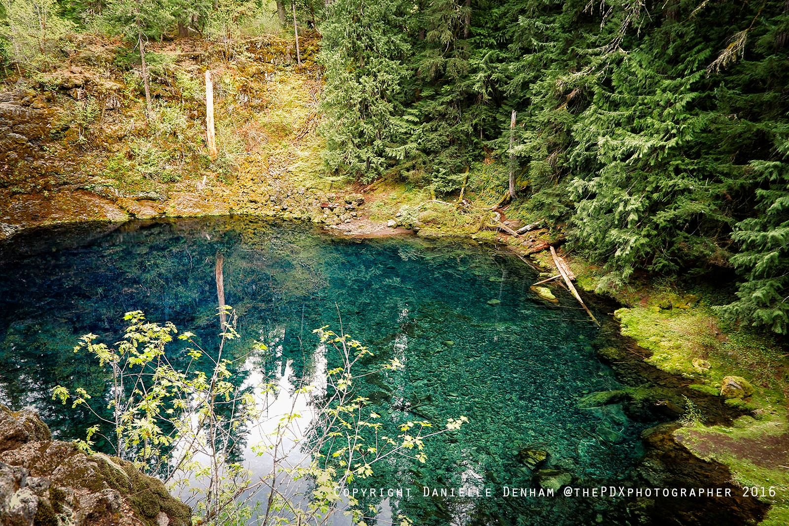 tamolitch blue pool. It\u0027s Known As Tamolitch, Commonly Referred To The Blue Pool In Oregon. Tamolitch