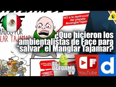 """Cosas que hicieron los ambientalistas de Face para """"salvar"""" el Manglar T..."""