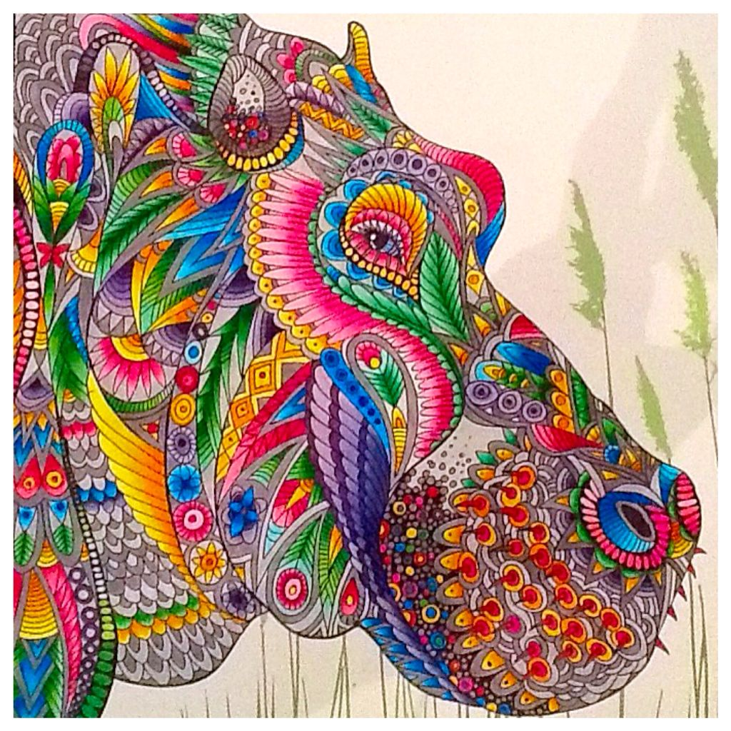 Pin On My Adult Colouring Addiction